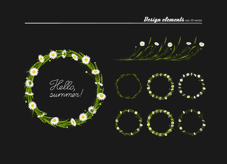 Set of elements for design - meadow camomiles, green grass. A vector.
