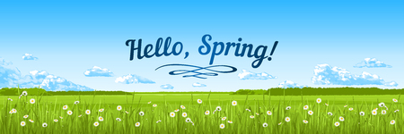 Hello, spring! A banner with an spring panorama - the blue sky, clouds, grass, flowers. Vector illustration.