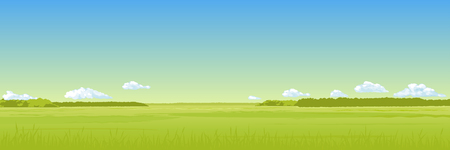 Panorama - the summer field with a green grass, the blue sky, clouds. Vector drawing.