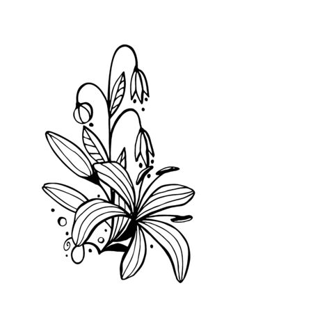 Floral composition. Flowers drawing with line-art, isolated on white background. Eps10 vector. Ilustração