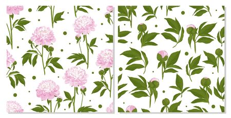 Seamless texture with peony. Flower for design - summer white peony. Hand drawn vector illustration.