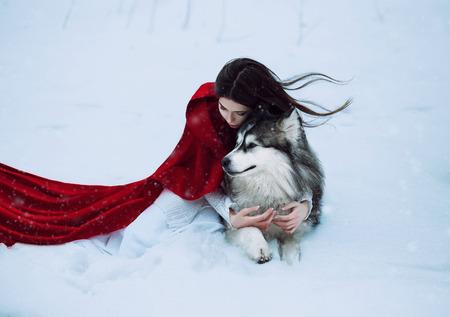 Czerwony Kapturek utracone w mistycznym zaśnieżonym lesie i spotkał wilka, niepowtarzalny fotografowania, modne tonizujące, twórczego kolorów komputerowych