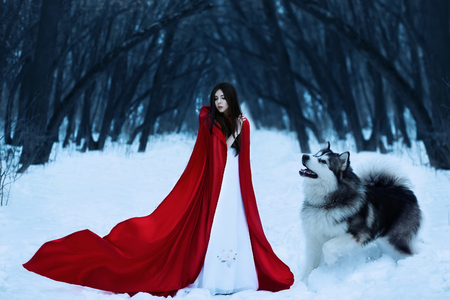 Red Riding Hood lost in the mystical snow-covered forest and met a wolf,fantastic shooting,fashionable toning, creative computer colors