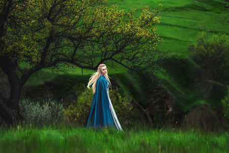 The beautiful elf in a long blue dress  is walking in a green forest full of branches,    ,Princess in vintage dress, the queen of the forest,fashionable toning,creative computer colors Foto de archivo