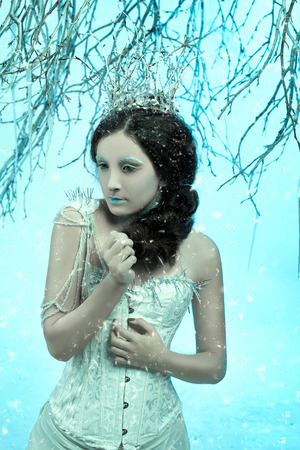 Luxurious lady in a white dress standing in  a snowy forest , Snow Queen, a fantastic shot,a fashionable toning , creative color