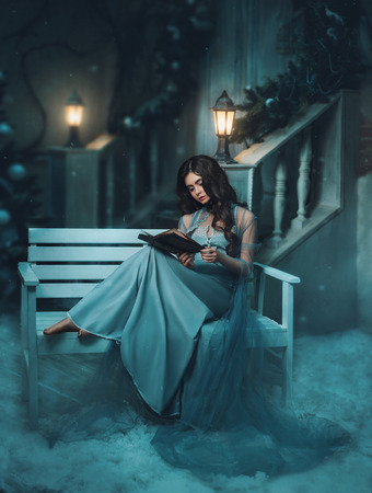 The Winter's Tale. Beautiful girl in a vintage dress. She sits on a bench and reading a book.  Snow and cold in the background. Long hair, baby face. Creative colors Stockfoto