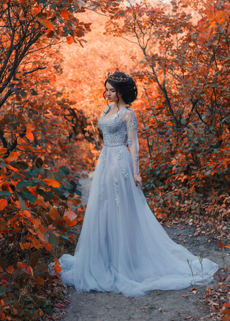 A young princess walks in a beautiful blue dress. The background is bright, golden autumn nature. Artistic Photography Stock Photo