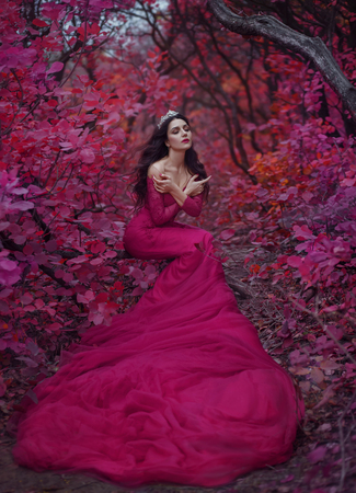 Incredible stunning girl, in a purple dress. The background is fantastic autumn. Artistic photography.
