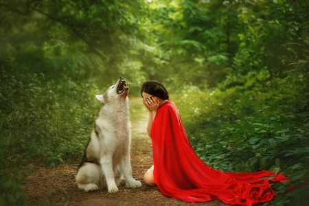 story of a red cap with a scarlet long flying fluttering cloak, a dark-haired girl covers her face with her hands and cries, a forest wolf lets out a howl, shows her teeth with sharp teeth Stok Fotoğraf