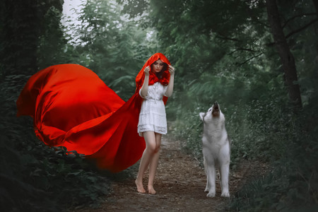 fabulous girl with dark hair in short light white dress covers her head with hood of long bright red flying fluttering raincoat, walks bare bare feet along forest path, wild wolf howls beside 免版税图像