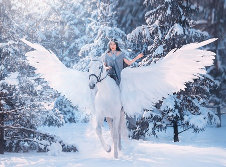 cute sweet sad lady on horseback with gorgeous soft light wings, white pegasus in a snowy winter forest carries a dark-haired girl in a gray dress, the friendship between man and animal Archivio Fotografico
