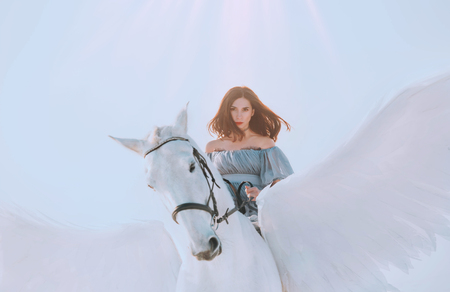 bright sky and sunlight, majestic girl with dark flying hair riding horse, an angel in gray vintage dress with open bare shoulders on back of gorgeous white pegasus with light elegant wings Standard-Bild