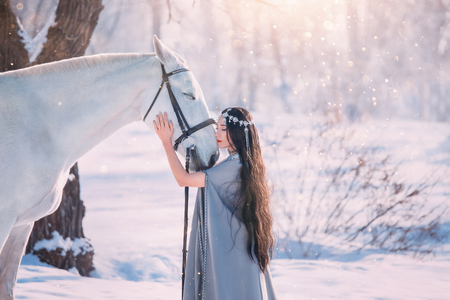 cute elf princess in long gray cloak and vintage dress, girl with long black wavy curly hair stands next to white gorgeous hourse, model poses for camera in winter snowy forest with bright sunlight Stock Photo