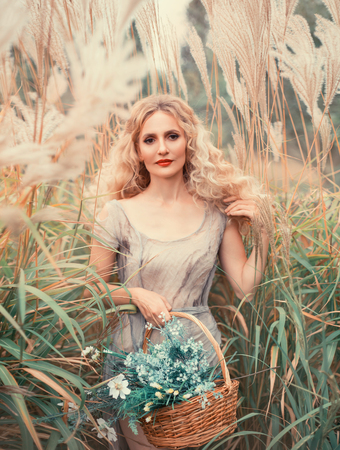 young attractive girl with blond curly hair in light gray old dress with basket of medicinal herbs in hand, pretty forest nymph walks through field with tall plants, soft smile in portrait photo Stock Photo