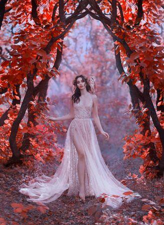 Wunderschöne Dame mit heller Haut und dunklem Haar, gekleidet in einem langen, leicht schicken, glänzenden Sommerkleid, Waldzauberzauberin geht mit ihrer weißen Eule auf der Schulter durch die Bäume mit roten Blättern Standard-Bild