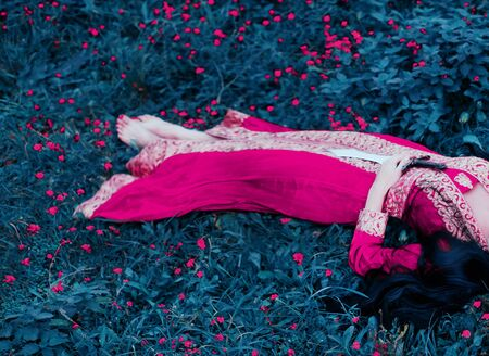 Woman princess warrior lies with a sword in her hands, after a battle with enemies. Sleeping beauty in a pink dress in oriental, arabic, turkish style. Long black hair. Background flower meadow. Banque d'images - 129011895