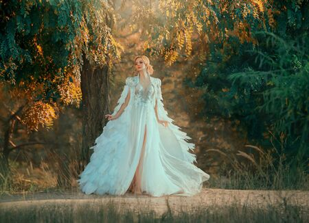 Young woman in incredibly dress with feathers. Creative cloak embroidered with stones, silver and down. White dress with a corset and a long skirt with tulle fluttering in the wind. Art photography Banque d'images - 129305303