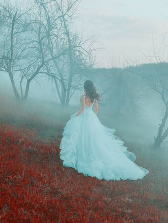 Cinderella hurries to the ball in a stylish wavy blue dress. Shooting from the back without a face. A mysterious woman walks in autumn mist on a hill. Gothic foggy atmosphere. Vintage romantic image. Banque d'images - 129551625