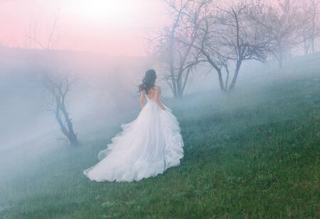 amazing Queen running through the hills in the fog sunset dawn. Luxurious, gorgeous white gown with a bare back. A train and loose hair waving in the wind. Runaway bride from wedding. Creative colors
