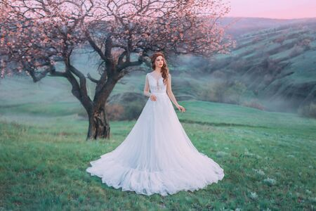 Fairytale Princess stands on a hilltop at dawn. Luxurious vintage white dress with lace. Stylish hairstyle for long hair with a braid. Background bright spring, lonely flowering tree. Creative colors Banque d'images - 129551623