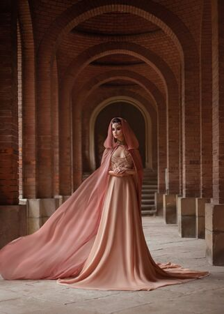 A luxurious lady in a long pink dress in a road coat with a hood is walking along the old castle corridor. The elven queen. The fabric of the train is flying, waving. Art Conspiracies and intrigues. 스톡 콘텐츠