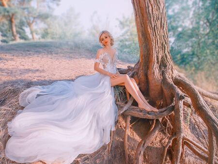 A mysterious, slender blond woman in a luxurious white dress. snow queen, sits near a tree with long roots. Fabolous forest. Hair collected elegant hairstyle. Stylish modern bride with attractive face 스톡 콘텐츠