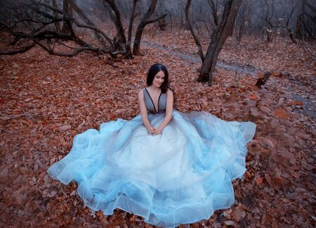 Stylish happy woman in a luxurious blue dress sits on ground in fallen orange leaves. Background autumn evening park with silhouettes of dark trees. Long Wavy Black hair. Smile on an attractive face.