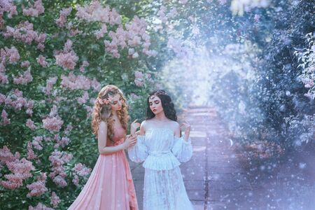 sexy portrait two women type spring and winter, perfect skin gentle makeup. Long curly hair brunette and blonde lady. Jewelry tiara wreath diadem. Vintage lace outfits. frozen flower garden snow Imagens