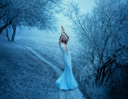 grain added. Winter Beauty Woman. Christmas Holiday Girl outfit clothes. Sexy mermaid silhouette wedding dress Snow Queen High Fashion. Blue frost tree fog nature Backdrop. Copy Space for Your Text