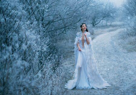 Junge Happy Lady Snow Queen Spaziergang im Freien. Kreatives, gemütliches Outfit, mittelalterlicher Kleidungsumhang mit Federn. Lächelndes Gesicht. Schneebedeckte Szene der frostigen Ansicht. Weihnachten Neujahr Feier Urlaub magische Fantasie Konzept