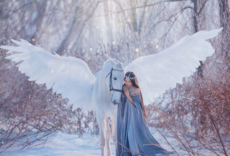 young beautiful woman goddess stroking mythical Pegasus, white magic wings. Brunette Long flowing hair wig. medieval princess vintage clothing cape. elf silver diadem tiara. winter nature snowy forest Standard-Bild