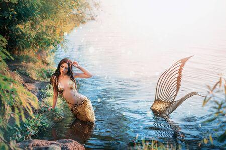 Fantasy woman real mermaid myth goddess of sea. Art goldfish creative costume ocean siren body spa relaxation. mystic spirit of lake river floats swimming in water. sunset nature Magic sun light Standard-Bild