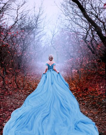 Artwork photo Beautiful silhouette woman princess Cinderella in autumn foggy mystic forest tree. Luxury magnificent royal blue dress very long train. image glamorous goddess. back of fairy tale Queen