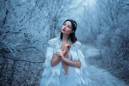 Young woman snow queen. Fantasy cape, white feathers. Creative clothes dress. Fashion model beautiful face. Elven cloak, princess in winter forest, trees in hoarfrost, snow. Silver Tiara Circlet