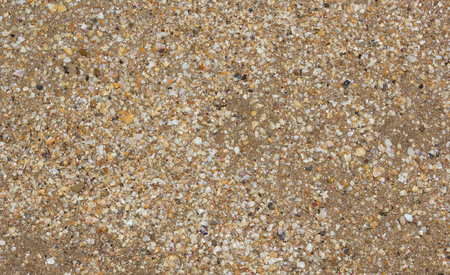 Background of sea sand and shells Stock Photo