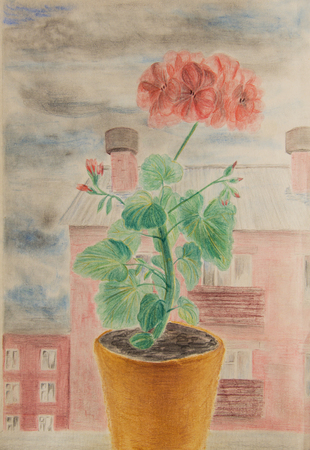Blooming geranium at the window against the cloudy sky. Drawing with colored pencils Stock Photo