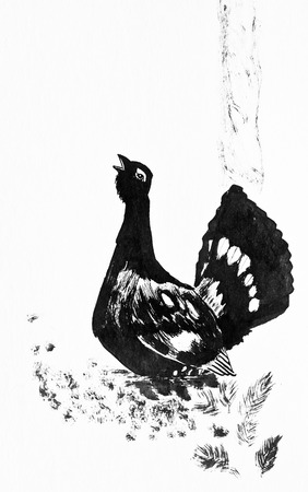 Capercaillie near the tree. Black and white ink drawing