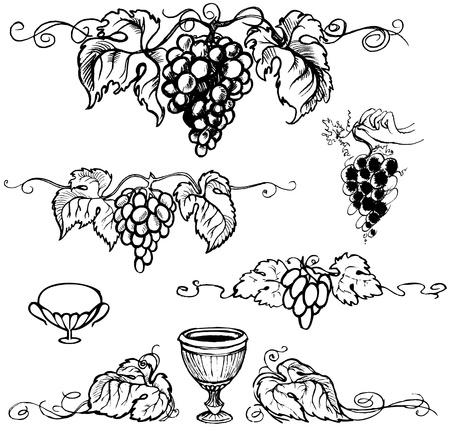 wineglass: Set picture of ripe grapes, monochrome picture. Vector illustration