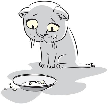 Hungry little kitty looks at the empty plate. Vector illustration Vector