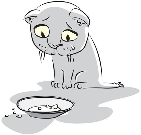 homelessness: Hungry piccolo gattino guarda il piatto vuoto. Illustrazione vettoriale