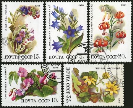 Medicinal Plants, postage stamp USSR photo
