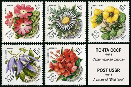 collectors: Wild flora, postage stamp USSR Stock Photo