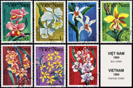 post stamp: Flowers, series plants, postage stamp Stock Photo