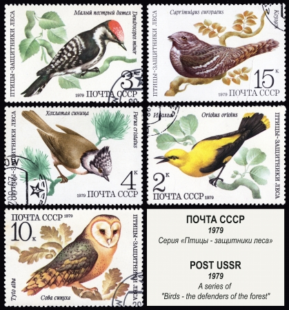 defenders: Birds - the defenders of the forest, postage stamp USSR Stock Photo