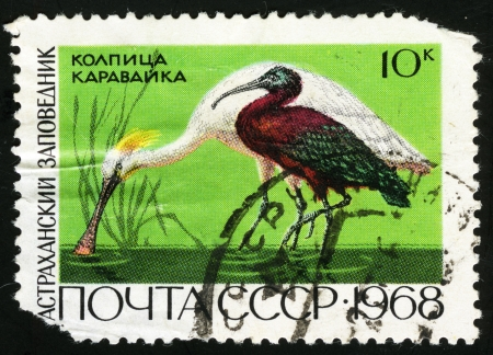 Astrakhan Nature Reserve, postage stamp USSR photo