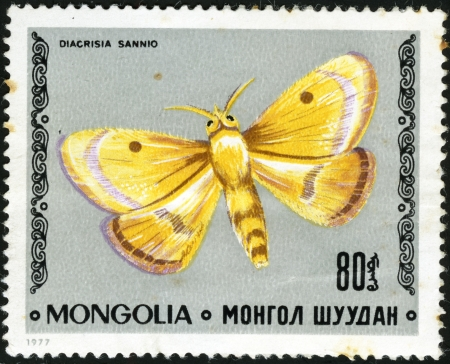 stamp collecting: Butterfly Clouded Buff - Diacrisia sannio