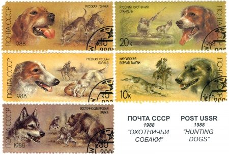 postage: Hunting dogs, postage stamp USSR