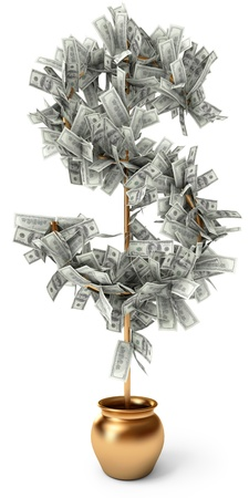 Dollar grows on a tree, on a white background, 3d render photo