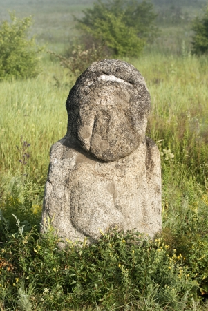 steppe: Stone idol in the steppe