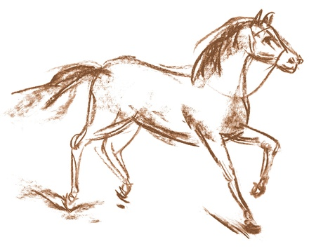 Horse, Hand-drawn, Phase of the movement Stock Photo - 16741437